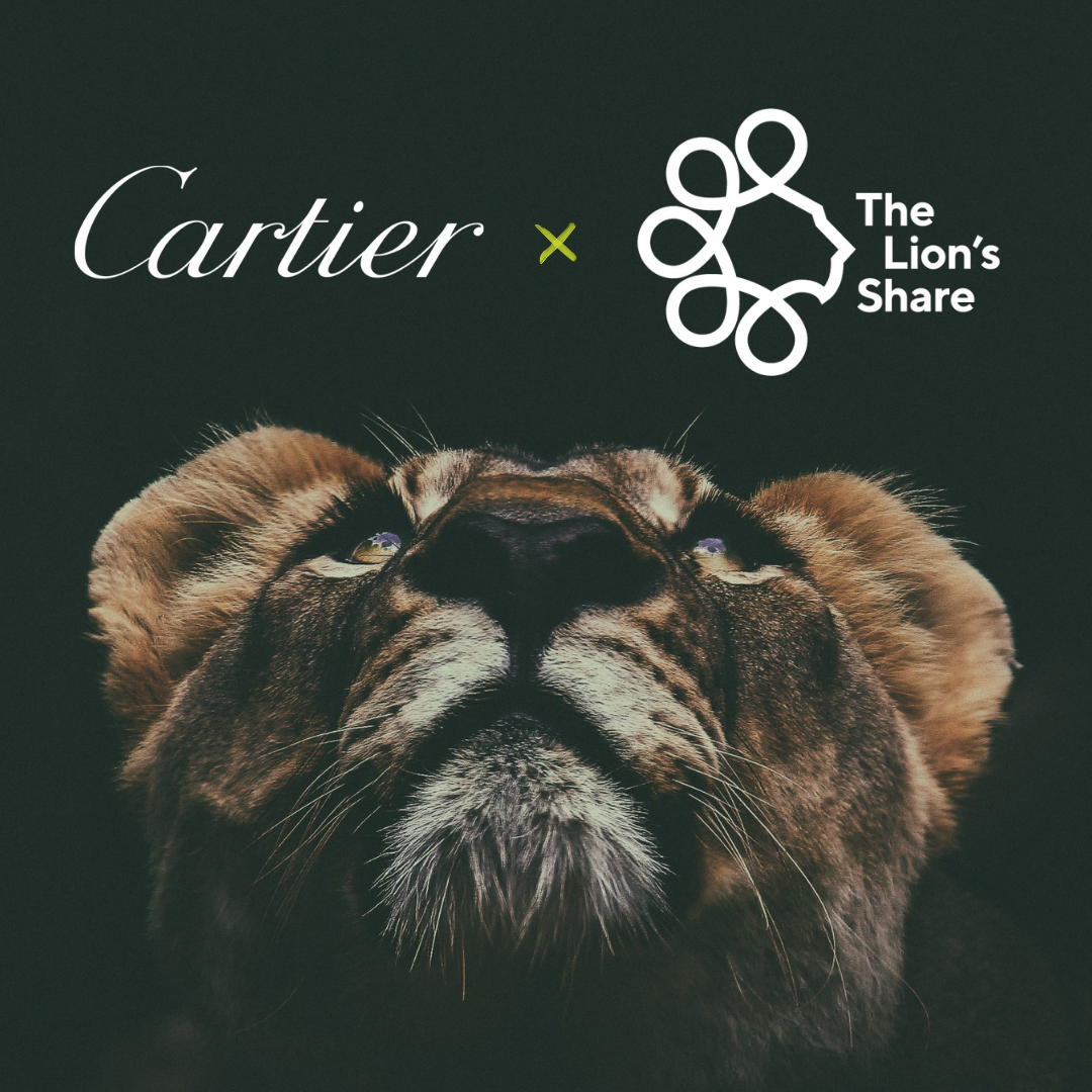 CARTIER THE LIONS SHARE